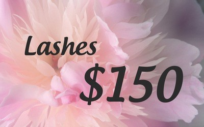 Lashes $150