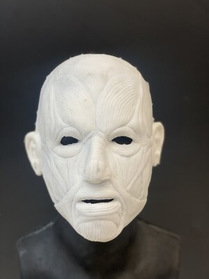 """""""Flayed"""" Silicone half Mask- IN STOCK! (Flawed/Damaged/Unpainted)(See description)"""