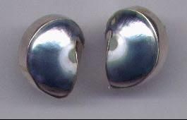 Nautilus Earrings Set In Sterling Silver