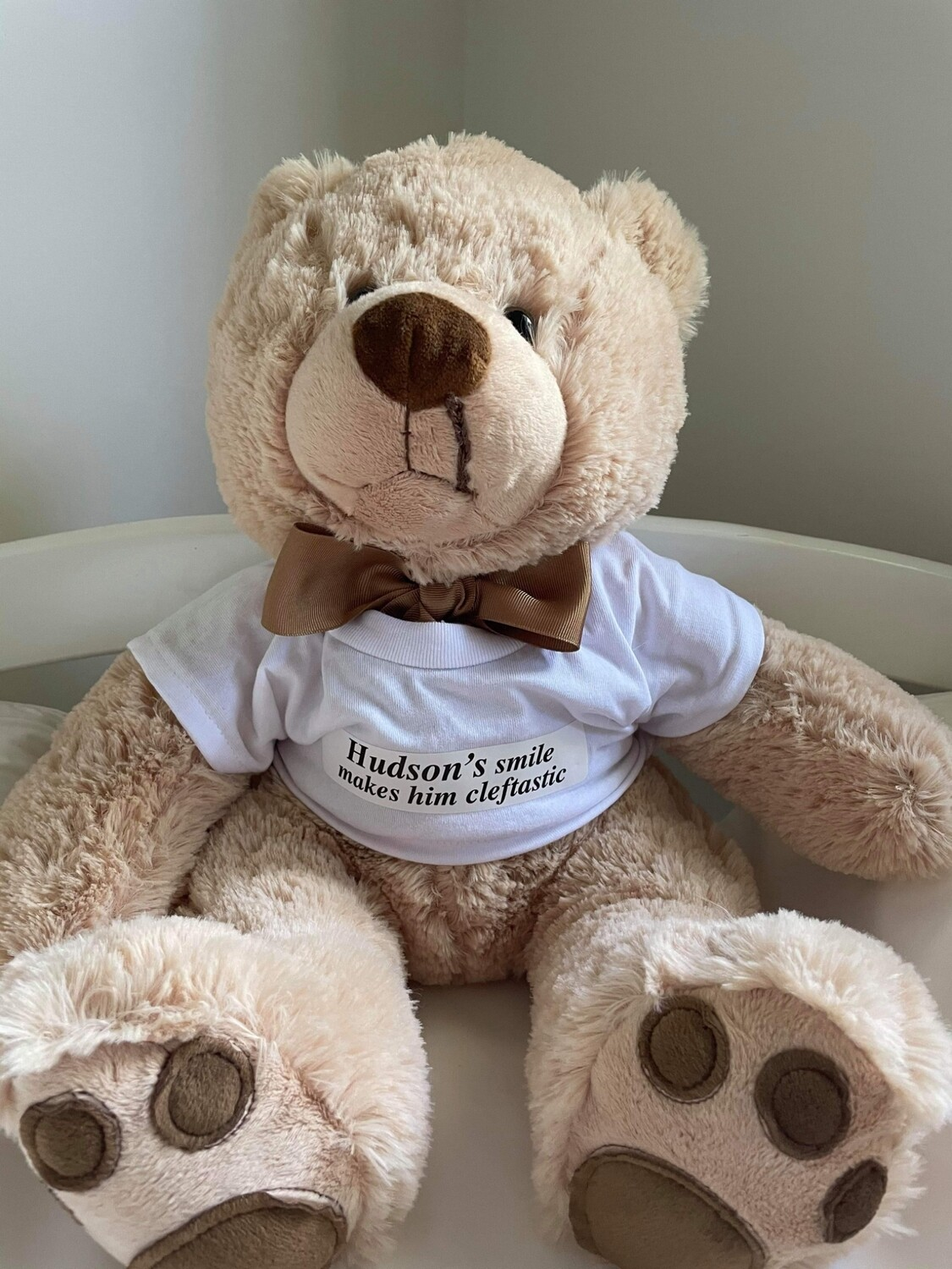Cleft support teddy bear