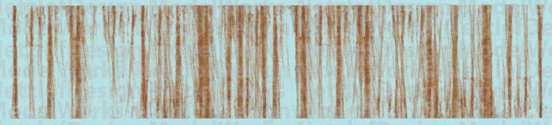 Rusty Roof Lines Weathering Set