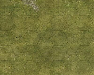 Grass 6x4 cloth 2 inch HEX