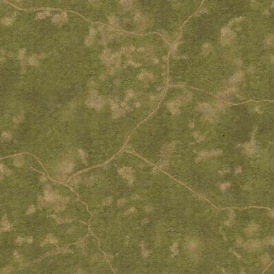 0146 Napoleonic 6mm grass roads 4x4 cloth