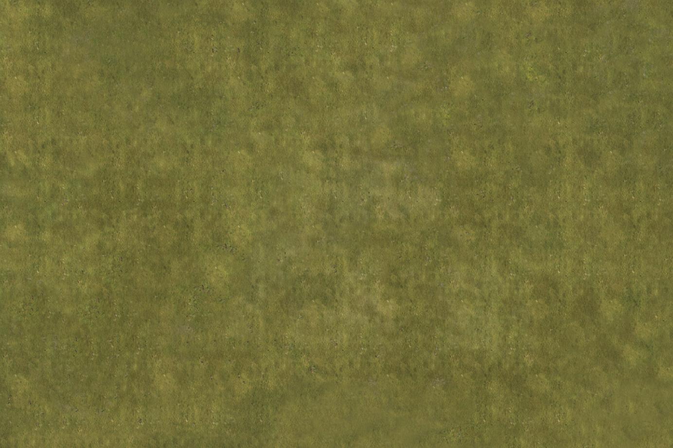 Grass with no rocks 6x4