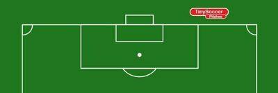Penalty Shootout 800x300mm velour pitch