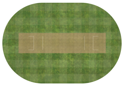 Oval cricket pitch