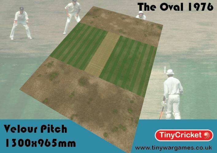 1976 The Oval Pitch 1300 x965mm velour