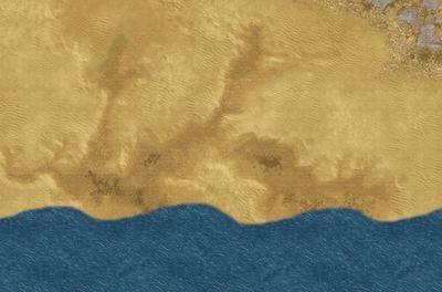 Desert sea coastal 6x4 feet