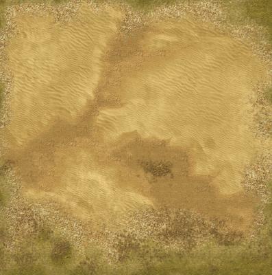 Desert 4 x 4 feet with grass border