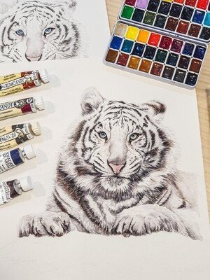 Animal Watercolor Workshop / 19 September