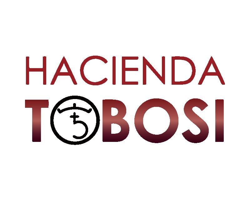 哥斯大黎加 托布希莊園 藝伎 蜜處理 競標批次