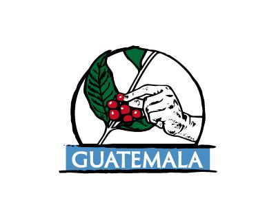 瓜地馬拉 溫泉莊園 象豆 日曬