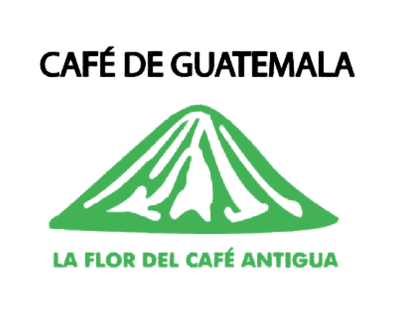 瓜地馬拉 安提瓜 拉米尼塔 花神 丸豆