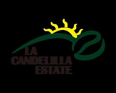 掛耳 哥斯大黎加 小燭莊園 藝伎品種