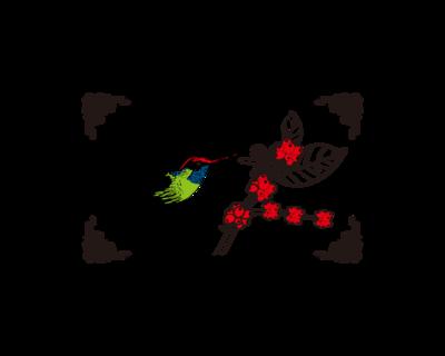 掛耳 哥斯大黎加 聖蘿蔓處理廠 蜂鳥 黑金烘焙
