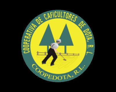 掛耳 哥斯大黎加 塔拉珠 多塔合作社 丸豆
