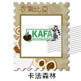 掛耳 衣索比亞(埃塞俄比亞) 卡法森林 野生咖啡豆 (Ethiopia Kafa Forest)