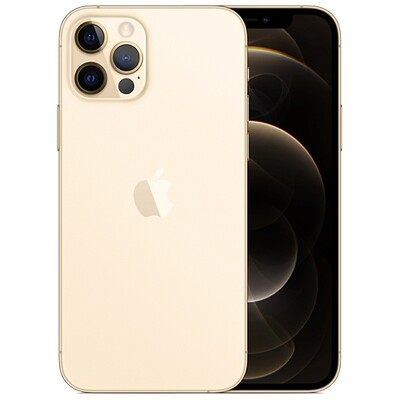 Смартфон Apple iPhone 12 Pro Max 256GB RUS (золотой)