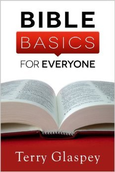 Bible Basics for Everyone by Terry Glaspey