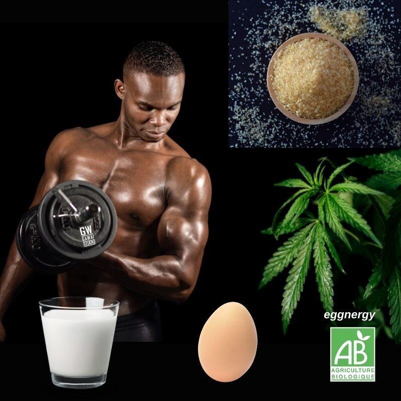 Wheygg chanvre et sucre de coco: 1 Kg