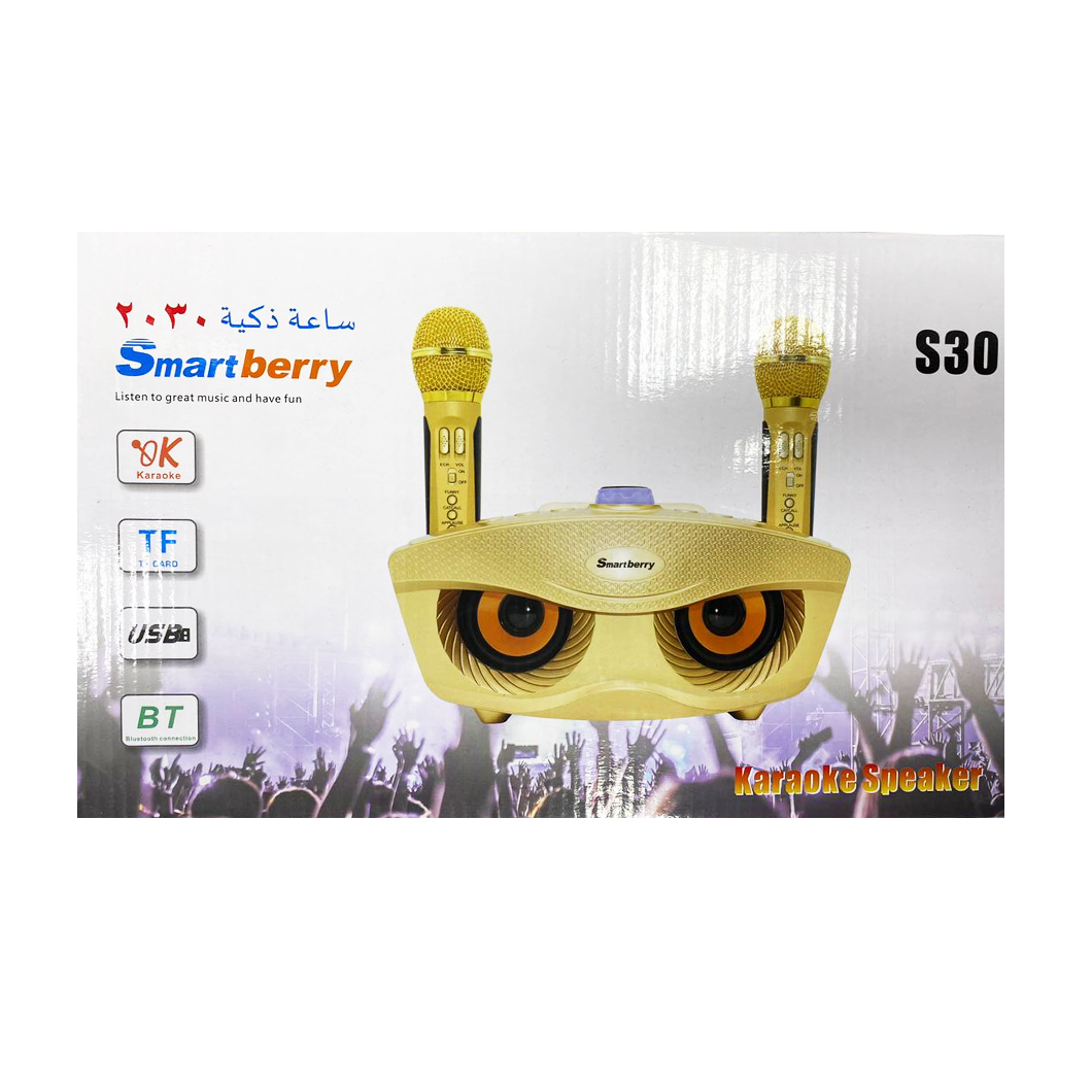 Smart Berry Bluetooth Karaoke Set
