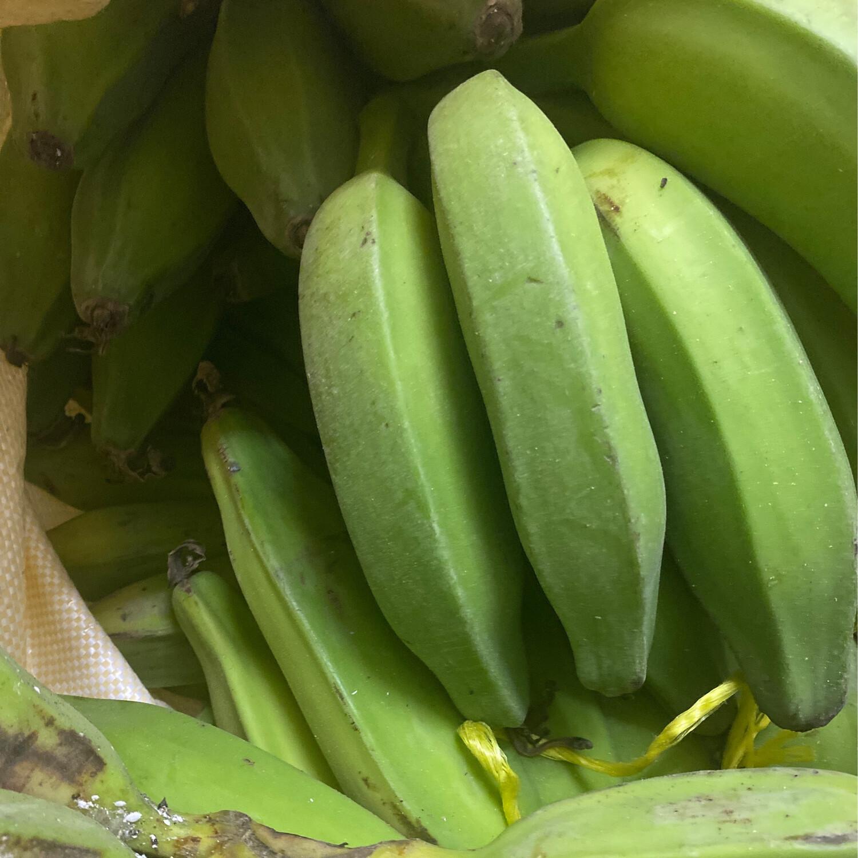 Fresh Banana Saba