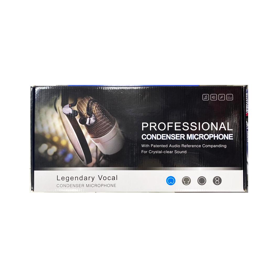 Professional Condenser Microphone