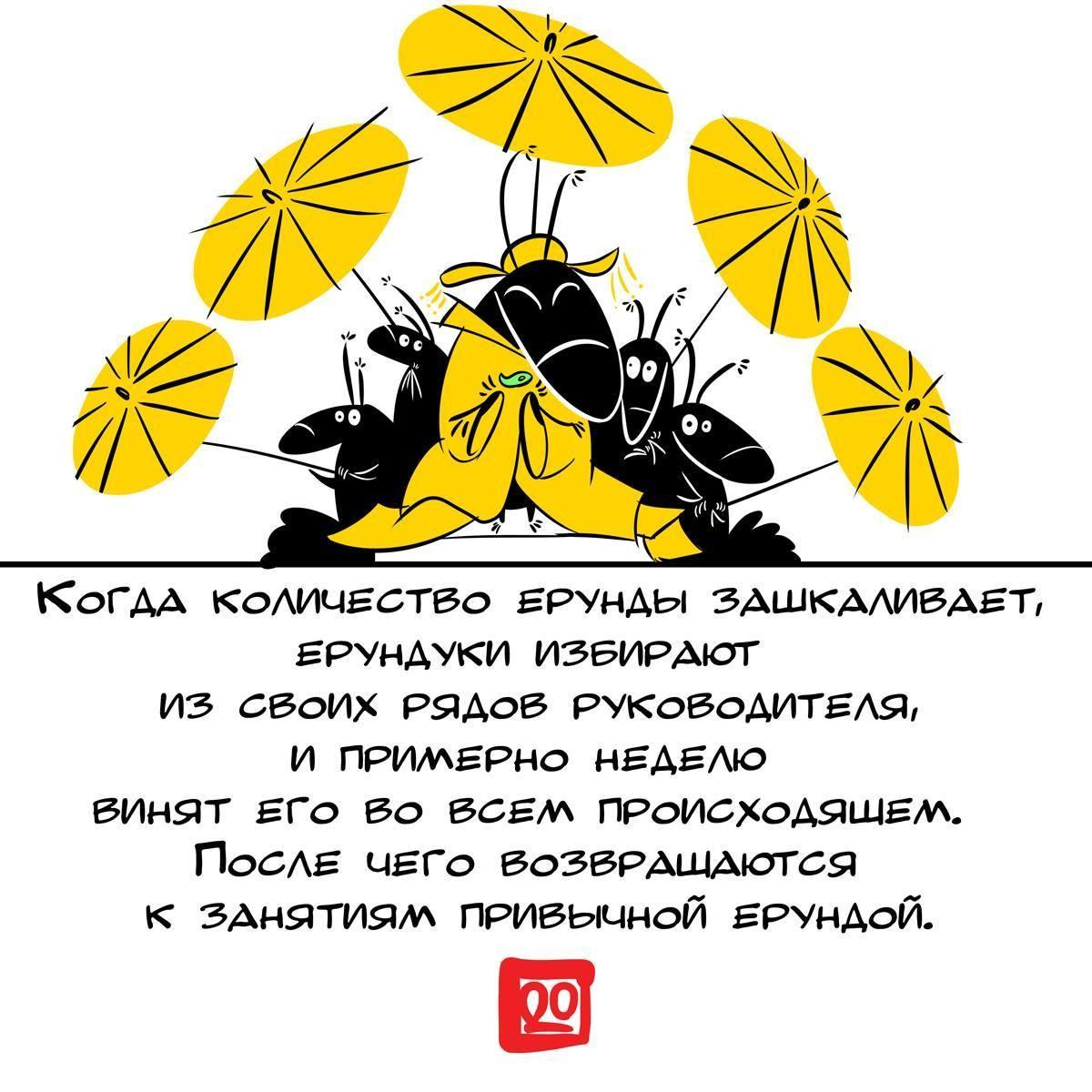 """Футболка """"Выборы - Руководитель"""""""