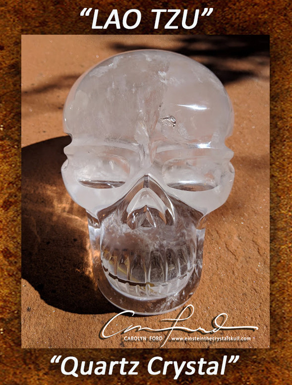 Clear Brazilian Quartz Crystal Skull, Einstein Imprinted,