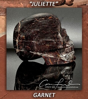 GARNET Crystal Skull, Einstein Imprinted Skull