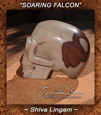 Shiva Lingam Skull Carving,  Einstein the Ancient Crystal Skull, Imprinted