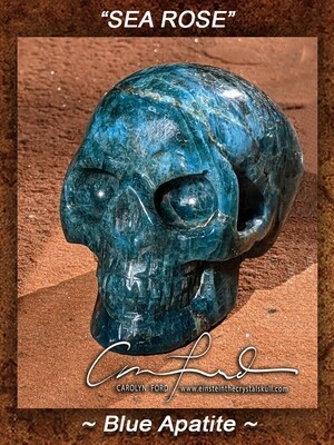 APATITE (Blue) Skull,  Einstein the Ancient Crystal Skull Imprinted,