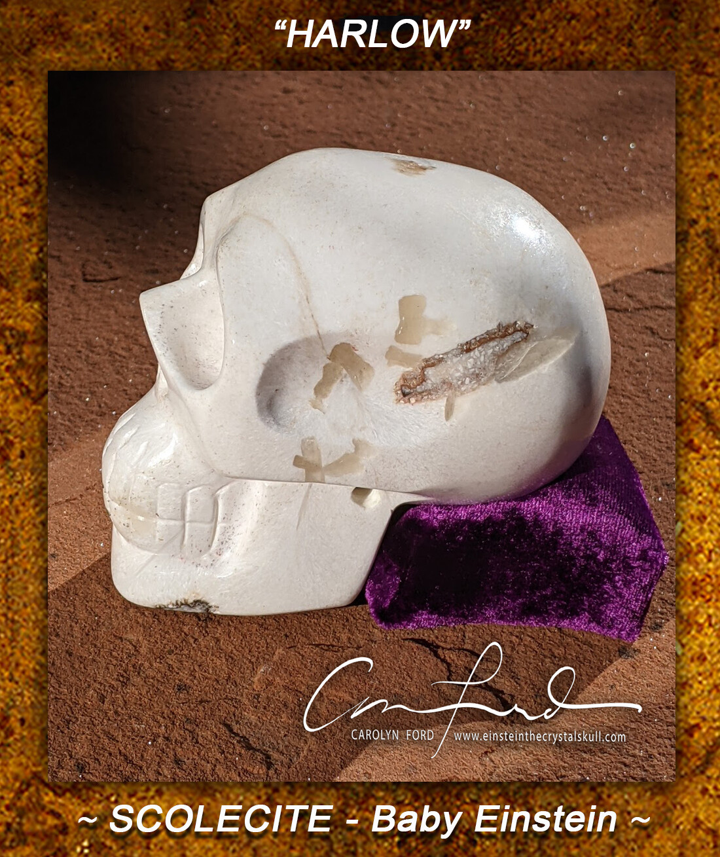 Scolecite, Baby Einstein Skull, Einstein Imprinted,