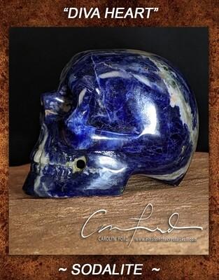 SODALITE ~Skull, Einstein Imprinted,