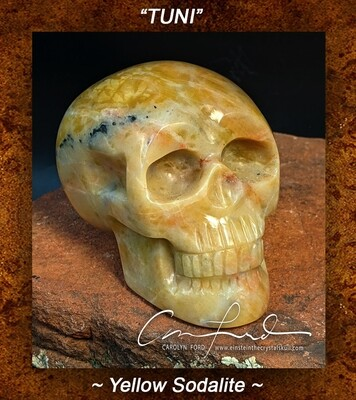 SODALITE  (yellow)~Skull, Einstein Imprinted,