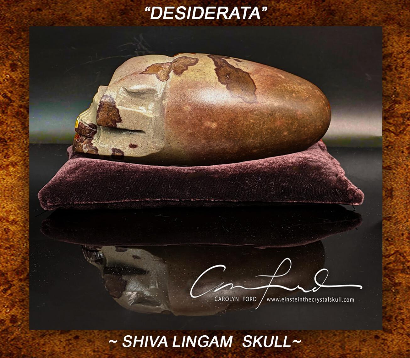 Shiva Lingam Skull,  Einstein the Ancient Crystal  Skull Imprinted