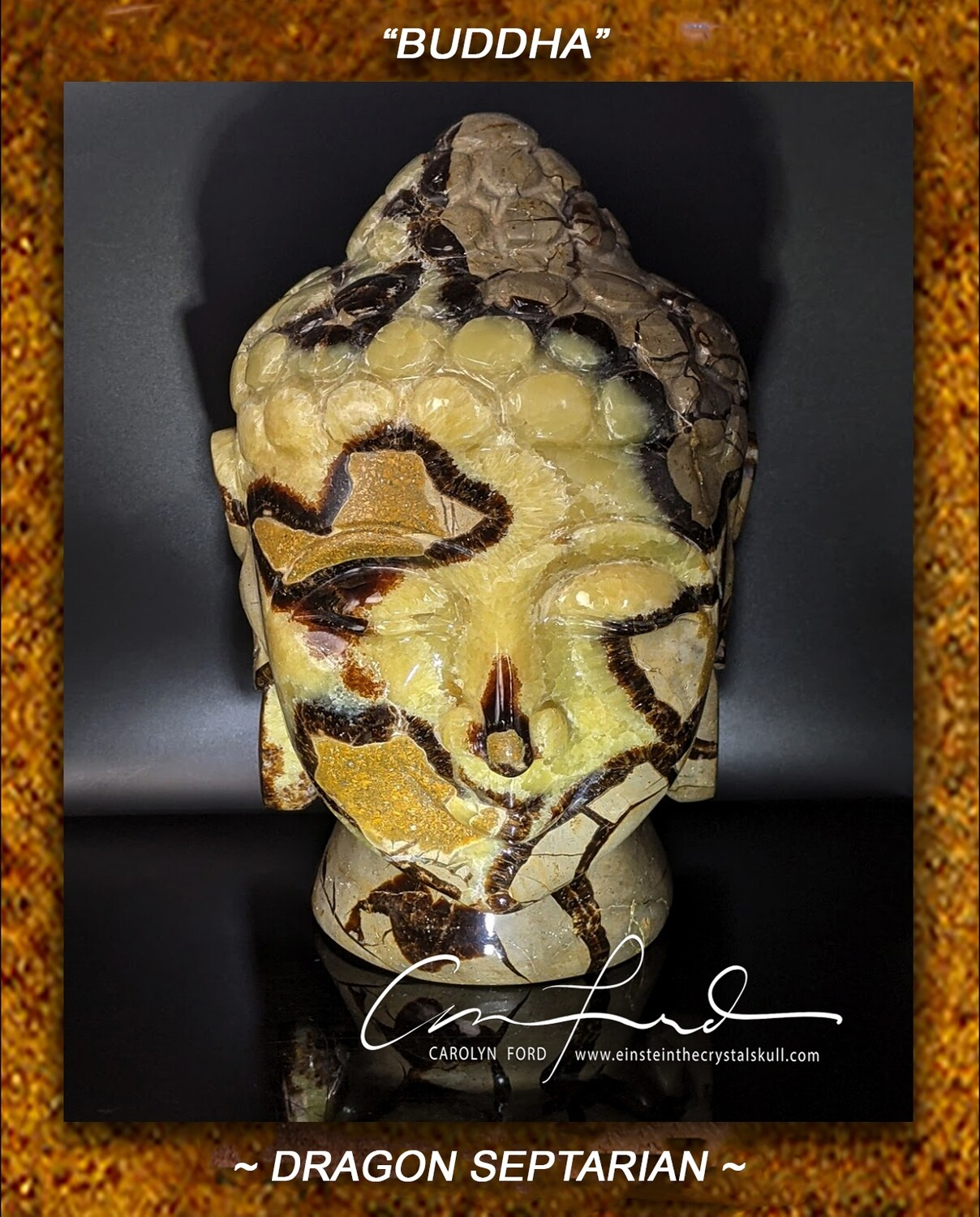 SEPTARIAN (Dragon Stone)  Einstein Imprinted,