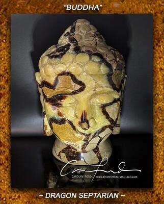 SEPTARIAN (Dragon Stone)  Einstein Imprinted,