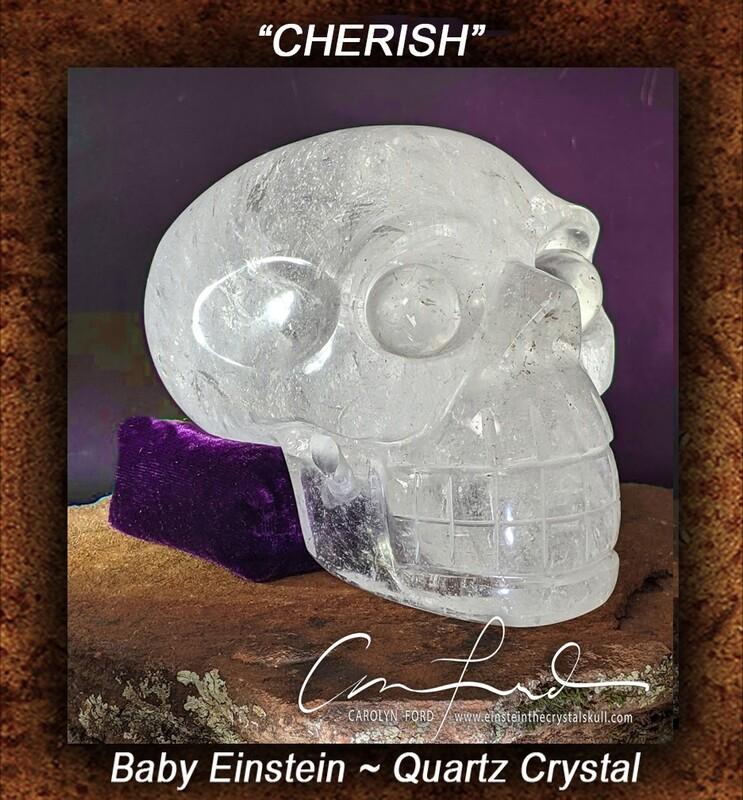 BABY EINSTEIN Crystal Skull Einstein Imprinted,