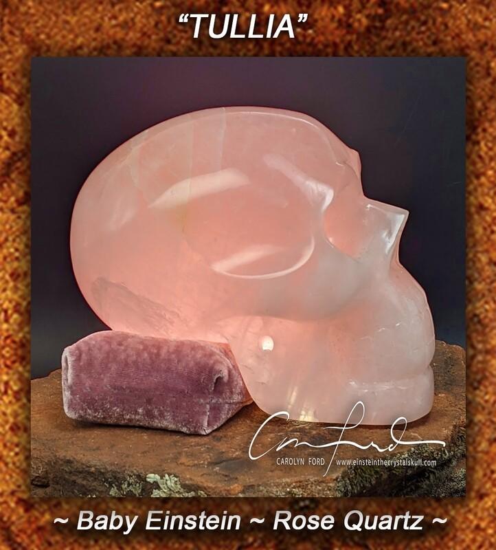 Baby Einstein, ROSE Quartz Crystal Skull, Einstein Imprinted