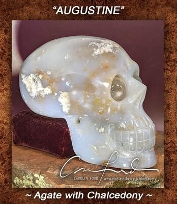 Baby Einstein ~ Agate Skull w/ Chalcedony  Einstein the Ancient Crystal Skull Imprinted