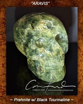 Prehnite w/ Black Tourmaline Skull, Einstein Imprinted,