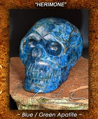 APATITE (Blue/Green) Skull,  Einstein the Ancient Crystal Skull, Imprinted,