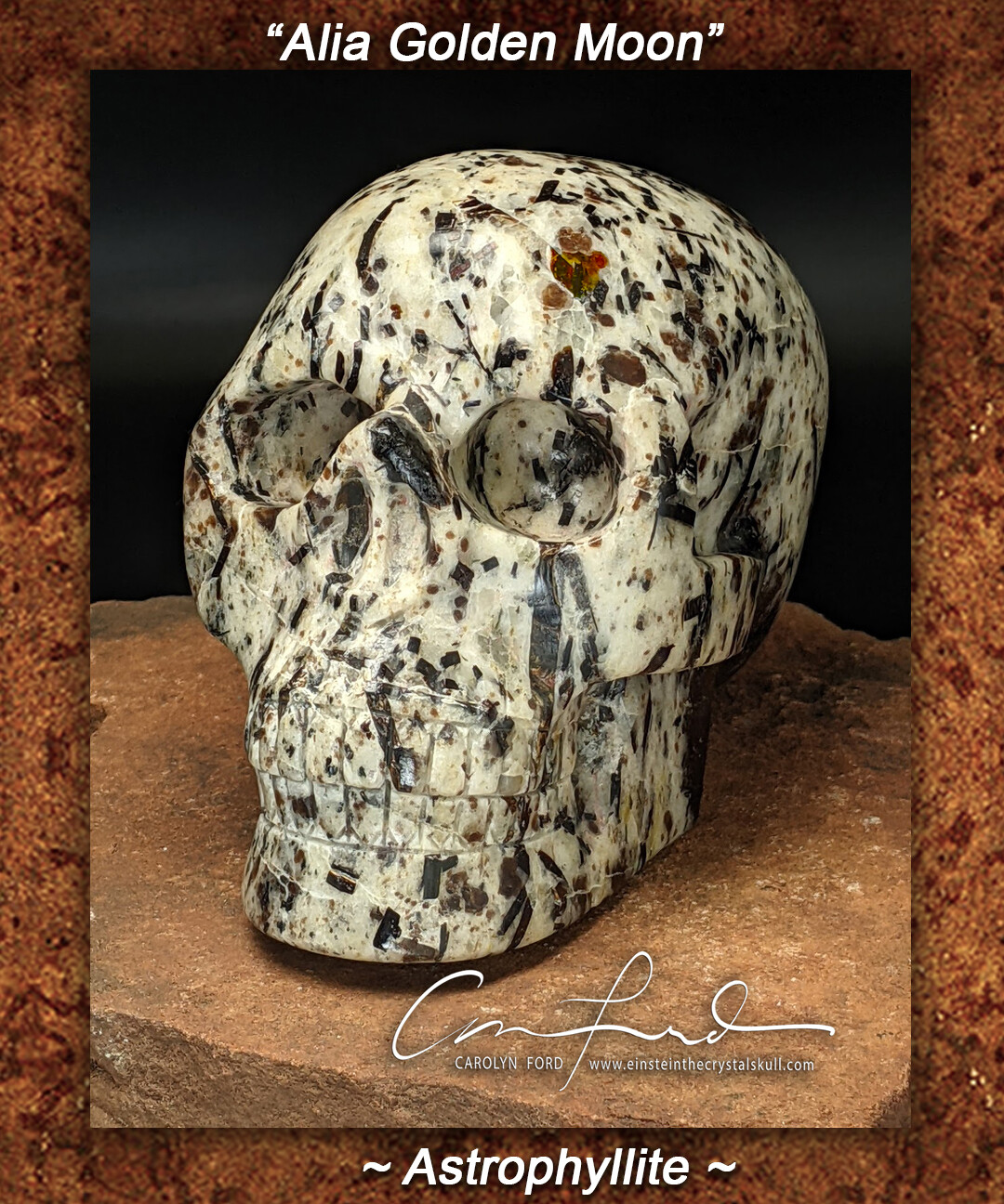 Astrophyllite Skull,  Einstein the Ancient Crystal  Skull Imprinted