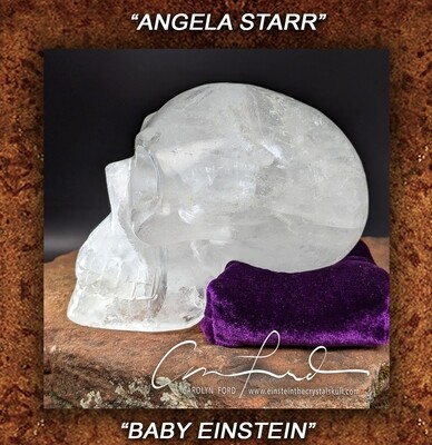 BABY EINSTEIN ~ Crystal Skull, Einstein Imprinted,