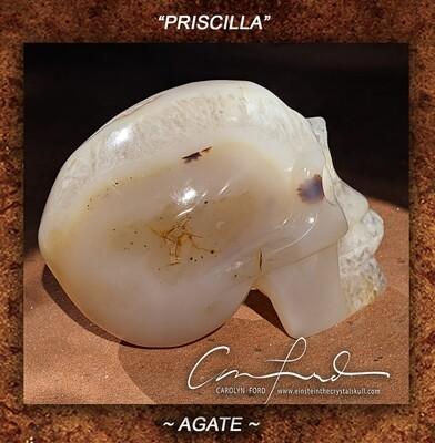 Agate Skull,  Einstein the Ancient Crystal  Skull Imprinted