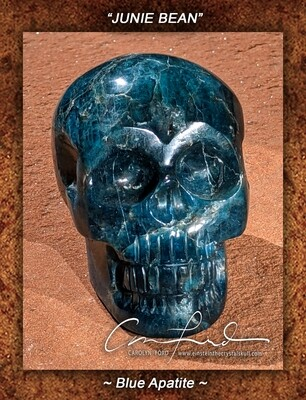 APATITE (Blue/Green) Skull,  Einstein the Ancient Crystal Skull, Imprinted,