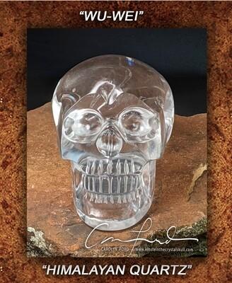 Himalayan Crystal, Einstein Imprinted Skull The