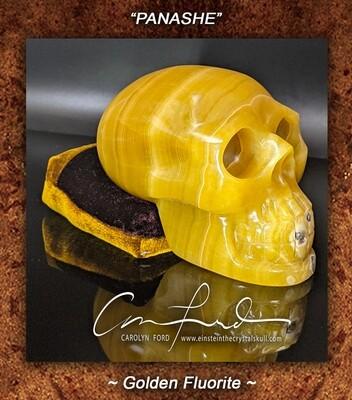 Fluorite (Golden) Baby Einstein Imprinted Skull