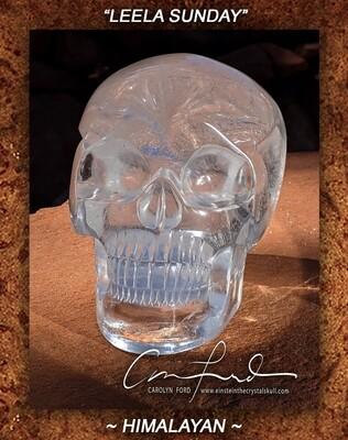 Himalayan Crystal, Einstein Imprinted Skull
